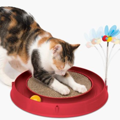 Tor z drapakiem Circuit Ball Toy with Scratch Pad 3w1
