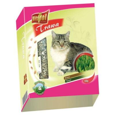 Trawka dla kota Vitapol, 100g (z pojemnikiem)