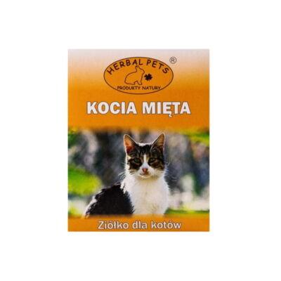 Kocia mięta waleriana dla kota