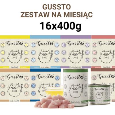 Zestaw Premium Gussto mix 16x400g